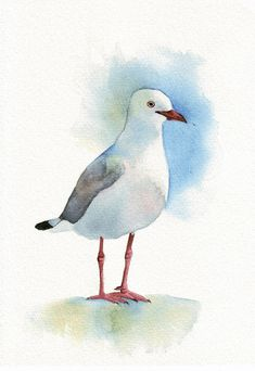 Seagull Painting Print of watercolor painting 5 by Splodgepodge