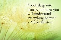 30 Thought Provoking Best Earth Day Quotes and Sayings Great Quotes, Quotes To Live By, Me Quotes, Inspirational Quotes, Sucess Quotes, Motivational Sayings, Earth Day Quotes, Nature Quotes, Albert Einstein Quotes