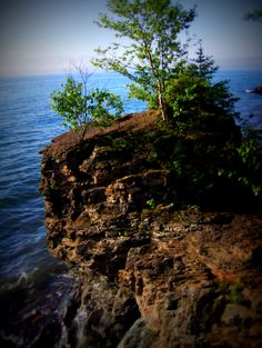 Things To Do With Kids Near Tofte Mn