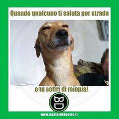 La tipica faccia da miopia! #vista #saluto Tagga i tuoi amici e #condividi #bastardidentro www.bastardidentro.it