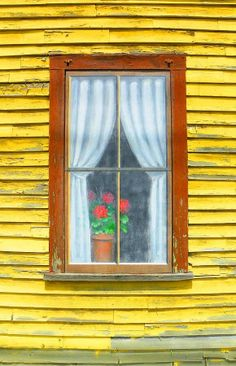Augusta, Maine.  A house in Augusta Maine painted the windows with this picture