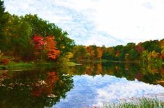New print available on lanjee-chee.artistwebsites.com! - 'Autumn with colorful foliage and water reflection 8' by Lanjee Chee - http://lanjee-chee.artistwebsites.com/featured/autumn-with-colorful-foliage-and-water-reflection-8-lanjee-chee.html via @fineartamerica