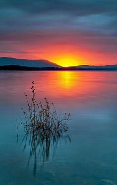 THE SUN IN ALL ITS BEAUTY LIGHT UP THE HORIZON