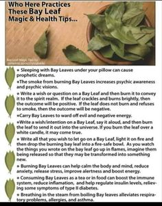 Witchcraft Spell Books, Magick Book, Wiccan Spell Book, Witchcraft Herbs, Green Witchcraft, Magick Spells, Magic Herbs, Herbal Magic, Burning Bay Leaves