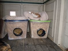 14 Outdoor Cat Bed Ideas Outdoor Cats Cat Shelter Cat Bed