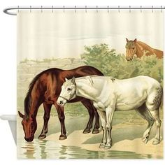 horse shower curtains - Google Search