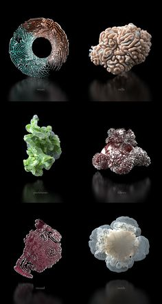 Neri Oxman's Bacteria-Infested Spacesuits Are Grown, Not Designed - Creators