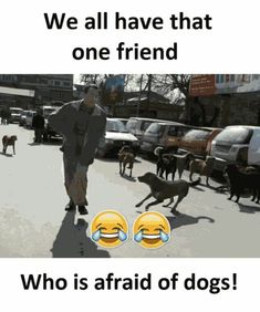 what is this bullshits always talk about dogs once u recite in front of me u cannot be dog anymore in my dreams ok Funny Best Friend Memes, Bff Quotes Funny, Besties Quotes, Crazy Funny Memes, Girly Quotes, Best Friend Quotes, Funny Relatable Memes, Funny Facts, Funny School Jokes