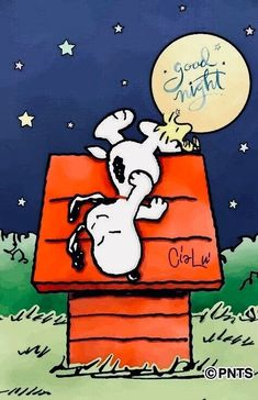 Good Night Friends, Good Night Gif, Good Night Wishes, Night Night, Peanuts Christmas, Charlie Brown Christmas, Charlie Brown And Snoopy, Snoopy Images, Snoopy Pictures
