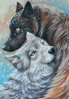 Winter wolves by artibird on DeviantArt Anime Animals, Baby Animals, Cute Animals, Anime Wolf, Beautiful Wolves, Animals Beautiful, Wolf Mates, Winter Wolves, Wolf Spirit Animal