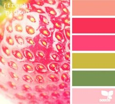 summer color. - my favorite palette evah!