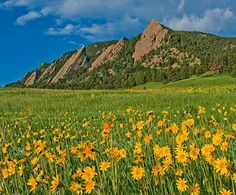 Chautauqua in boulder Boulder Flatirons, Bouldering, Monument Valley, Places Ive Been, Photo Art, Colorado, Beautiful Scenery, World, Real Life