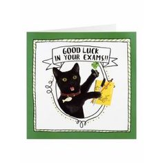 Black Cat Good Luck In Your Exams Card