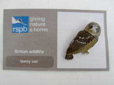 Charity Pin Badge RSPB Enamel Giving Nature A Home Tawny Owl British Wildlife