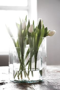 Spring flowers / White Tulips in a Double Vase Flower Power, My Flower, Fresh Flowers, Spring Flowers, Beautiful Flowers, White Tulips, White Flowers, Indoor Water Garden, Deco Floral