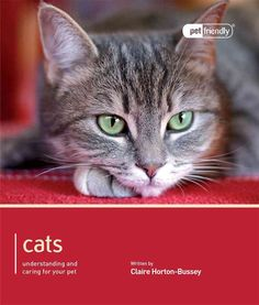 Cats: Understanding and Caring for Your Pet