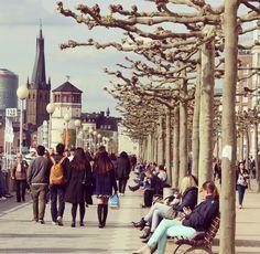 #düsseldorf walks #travelgram #travelpics #germany #seyahat #streetphotography #zamanidurdur #durdurzamani #aniyakala #travelblog
