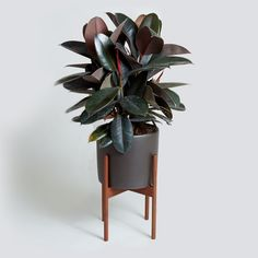 case study cylinder planter with wood stand home accessories pinterest case study planters and woods