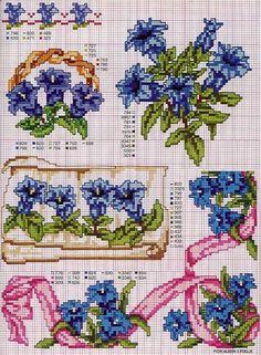 Gallery.ru / Фото #53 - Ботаника-цветы - irislena