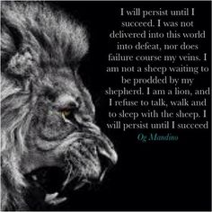 Image result for Lion Quotes