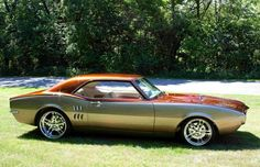'67 Firebird.- Copper, gold and silver
