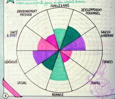 La roue de l'évaluation de la Vie niveau 10 (ou level 10 life)
