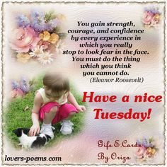 Have A Nice Tuesday day tuesday tuesday quotes tuesday blessings tuesday images tuesday quote images