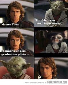 Yoda's graduation photo…bahahaha