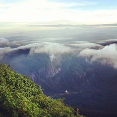 Adams Peak, Sri Lanka----- this is on my list of places to see when I go to Sri Lanka in a few years Sri Lanka Honeymoon, Adam's Peak, Thing 1, Honeymoon Ideas, Adventure Is Out There, Far Away, Mother Earth, Places To See, Travelling
