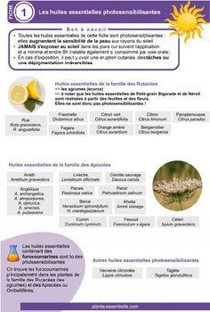 Alternative Hair, Alternative Medicine, Gaia, Alternative Therapies, Boutique, Aromatherapy, Essential Oils, Fruit, Health