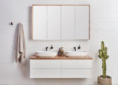 Designed to showcase the natural timber beauty the Staples vanity reflects a true coastal style. Available as a Single and Double vanity the Staples range is a practical solution for any bathroom. Shaving Cabinet, Beach House Bathroom, Bathroom Trends, Bathroom Ideas, Bathroom Gallery, White Vanity, Meditation Space, Contemporary Bathrooms, Bathroom Interior Design