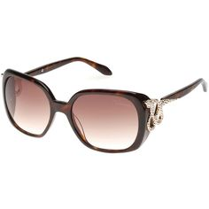 d5f2fba82bed Roberto Cavalli Crystal Snake-Temple Sunglasses ( 425) ❤ liked on Polyvore  featuring accessories