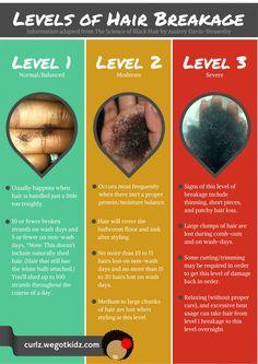 Levels of Hair Break