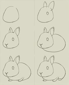 How to draw bunny. Learn to draw a cute bunny step by step images . Drawing Tips how to draw a bunny Drawing Lessons, Drawing Techniques, Art Lessons, Drawing Tips, Drawing Ideas, Cute Easy Drawings, Easy Sketches To Draw, Easy Sketches For Beginners, Easy Animal Drawings