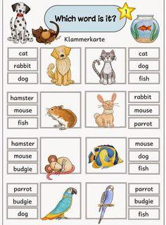 """Klammerkarten zum Englischthema """"pets"""" Auch diese neuen Klammerkarten sind ein W. English Time, English Words, English Grammar, Teaching English, Learn English, English Language, English Lessons For Kids, Kids English, Early Reading"""