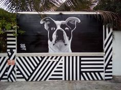 Stencil Dog Street Art from Caribbean Mexico Black and White