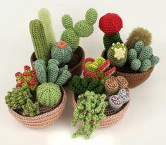 Colección de cactus de Crochet. Parecen auténticos pero son cactus...