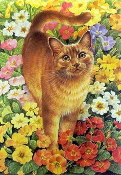 занадто яскраві квіти котику не завадять
