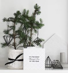 х Рождество карты по году организованной жизни    укладка Мишель Halford