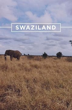 College students! Join us this spring for an unforgettable semester abroad in the beautiful Swaziland. #passportstories