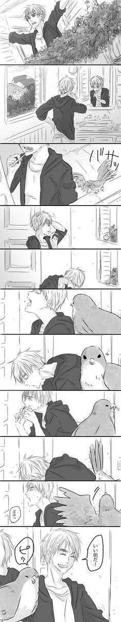 Hetalia- England oh dear poor bird you are not getting any attention lol