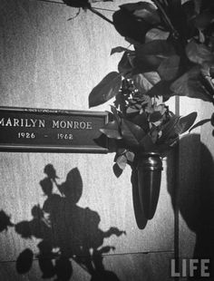 Marilyn Monroe   (June 1,1926 – August 5, 1962)  Marilyn's crypt, Westwood Village Memorial Park Cemetery, Los Angeles (Corridor of Memories #24). A half dozen red roses were placed on her tomb for 20 years, courtesy of Joe Dimaggio. Photograph by John Loengard for LIFE, 1962