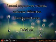 most popular quotes by Dalai Lama #Quotes #Famous Quotes