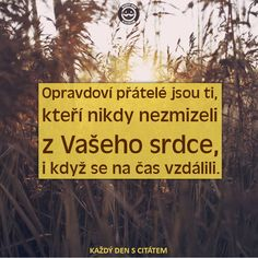 Opravdoví přátelé jsou ti, kteří nikdy nezmizeli | citáty o přátelství Nov, Motivation, Friends, Quotes, Inspiration, Amigos, Quotations, Biblical Inspiration, Boyfriends