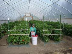 Construction of High Tunnels: Resources - extensions - small acre farm