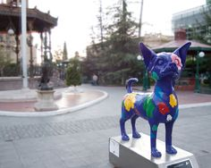 Chihuahua Statue in Chihuahua, Mexico
