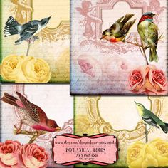 Digital collage sheet BOTANICAL BIRDS, aceo, ephemera great for notecards, tags an scrapbooking