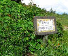 Die Blumeninsel Madeira bietet eine vielseitige Landschaft und ein ganzjährig angenehmes Klima.
