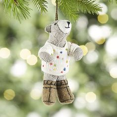 Bob the Bear in Polka Dot Sweater Ornament | Crate and Barrel