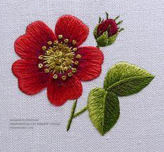 Embroidery Stitches Tutorial, Free Motion Embroidery, Embroidery Needles, Hand Embroidery Patterns, Beaded Embroidery, Embroidery Designs, Thread Painting, Flower Center, Satin Stitch